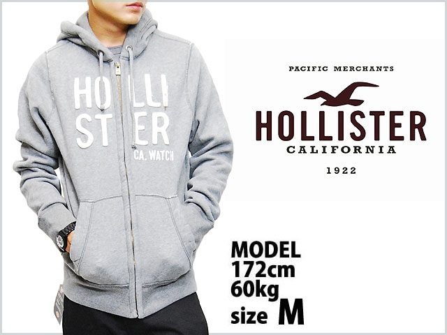 Hollister_gray_1